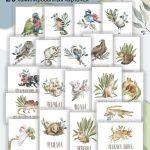 Иллюстрация к статье В. Юрченко об ошибках в детских книгах